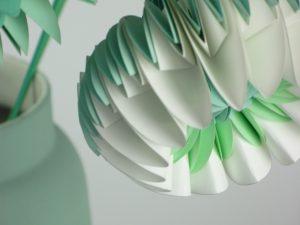 paperflower mint
