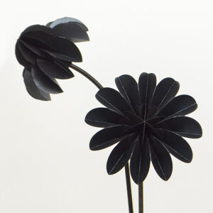 paper flower special edition